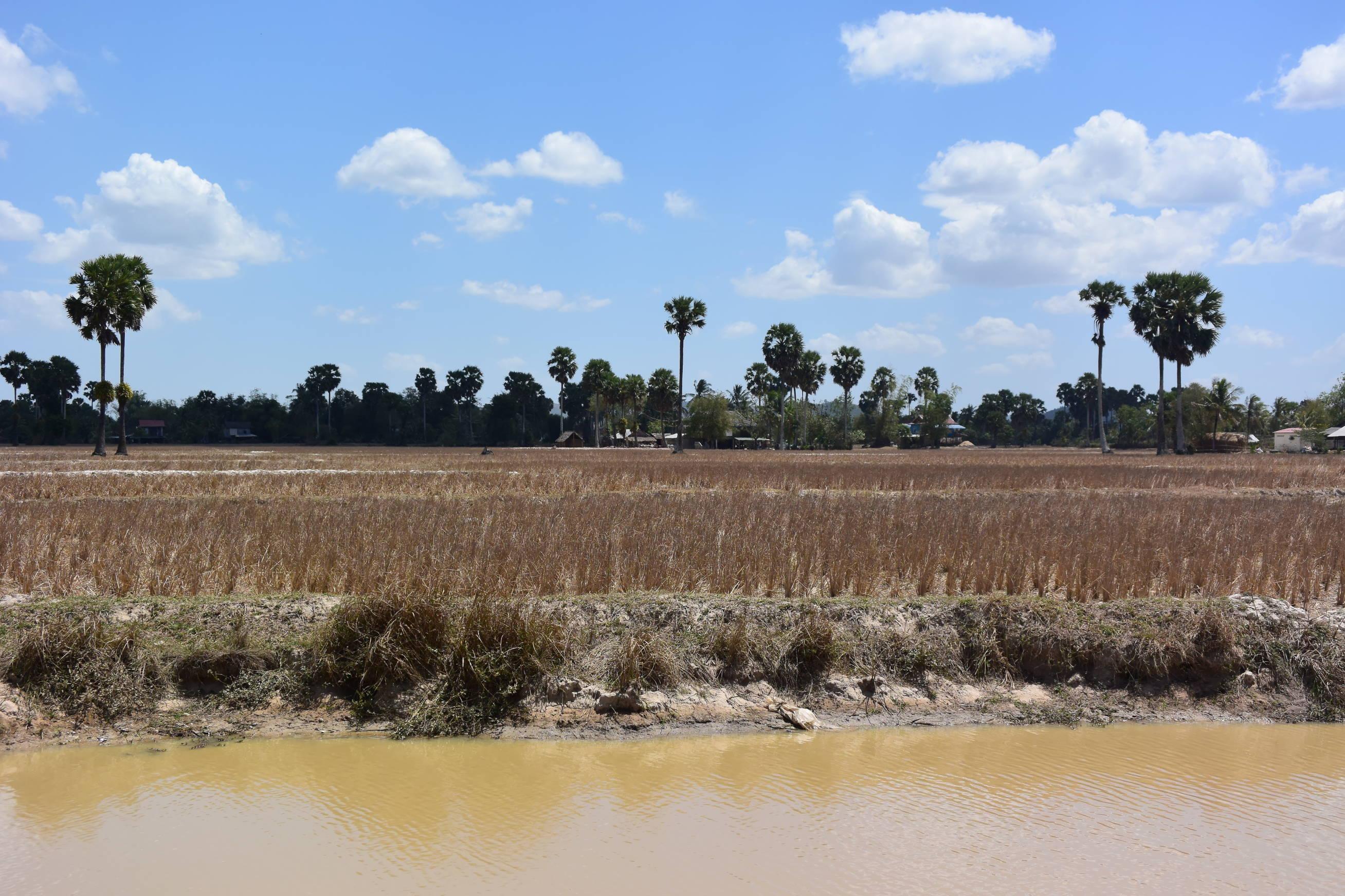 Environs de Kampot et Kep au Cambodge 1