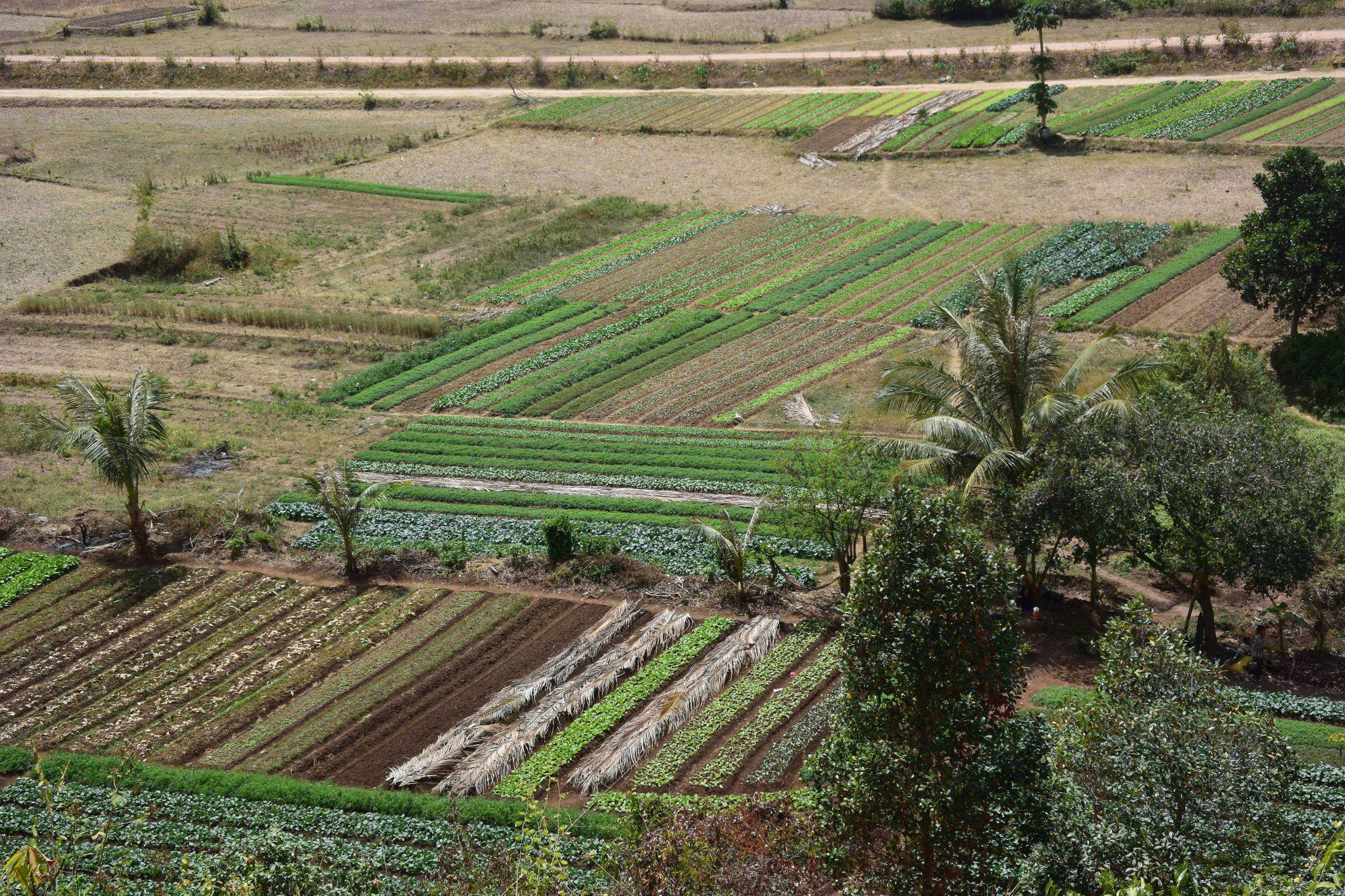 Environs de Kampot et Kep au Cambodge 4