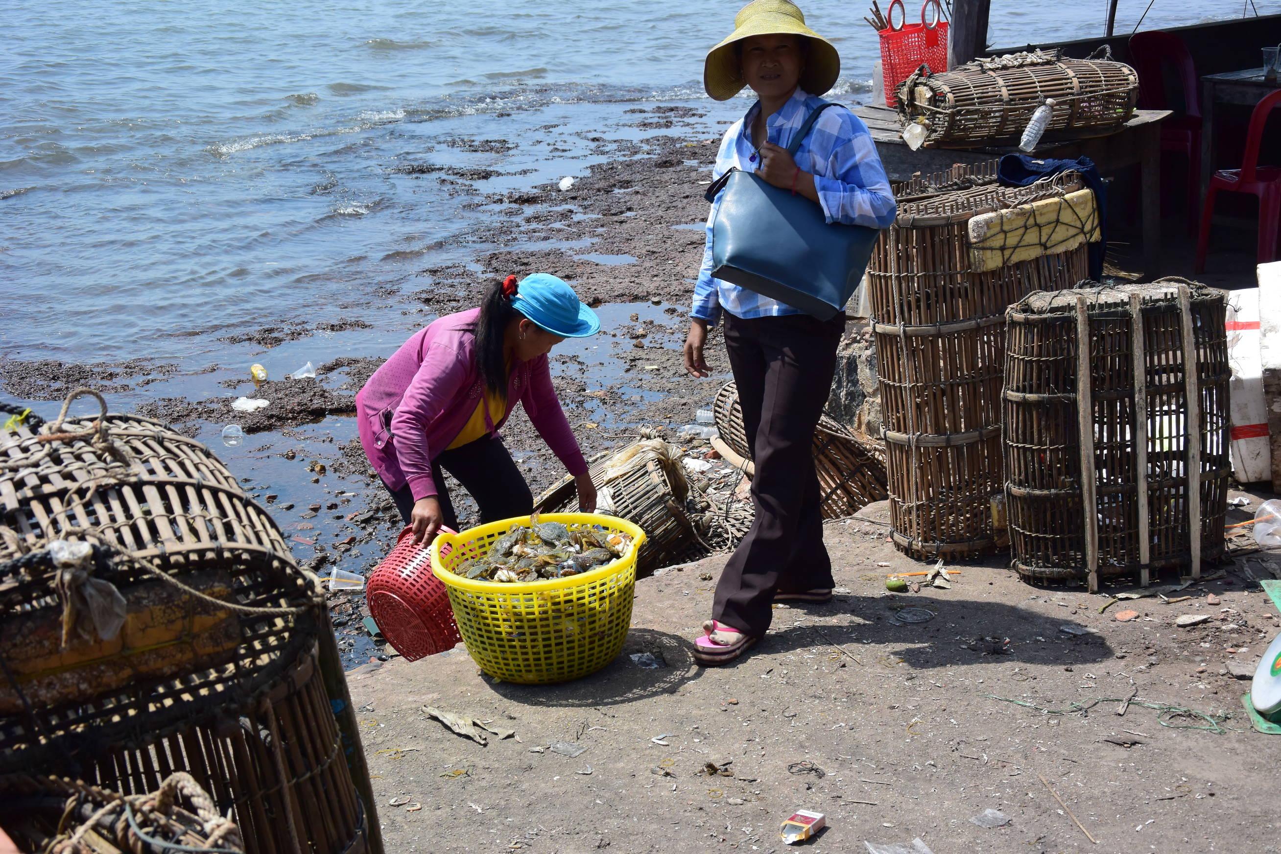 Marché aux crabes de Kep au Cambodge 5