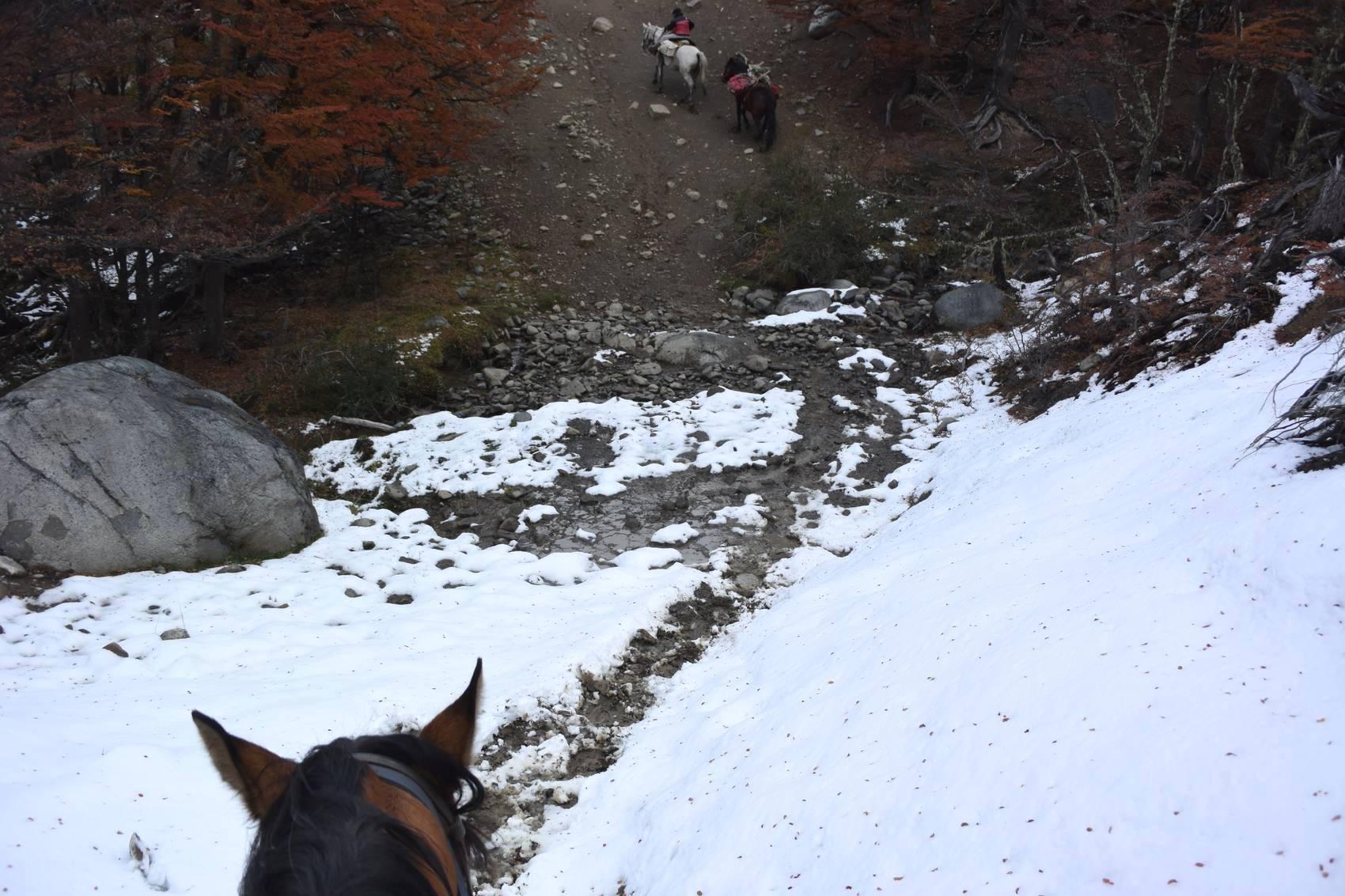 Cavalcade en Patagonie 7