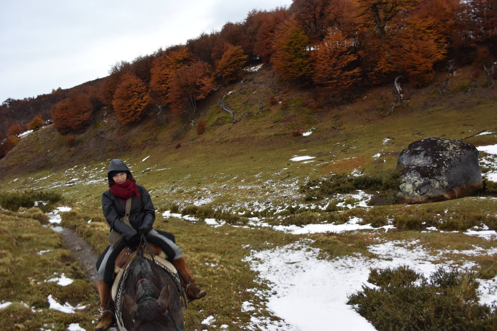 Cavalcade sous la pluie en Patagonie
