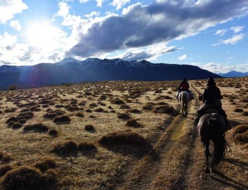 Ensorcelante El Calafate – Partie 2: À cheval en Patagonie